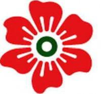 Специальные условия для новых корпоративных клиентов, пришедших на обслуживание в НАДРА БАНК в период с 01.07.2011 г. по 01.10.2011 г.