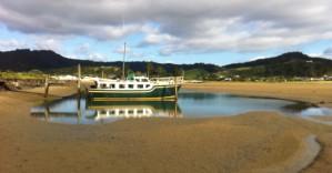Переезд в Новую Зеландию: важные особенности и советы экспертов