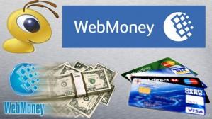 Кредиты Веб мани. Как получить