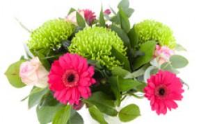 Смысл цветов – 10 цветков с секретным значением