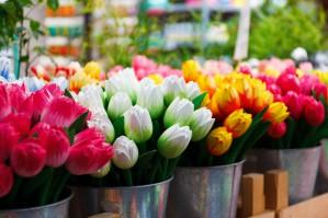 Праздники в Подмосковье: досуг на 23 Февраля, 8 Марта и праздники в мае