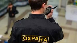 Охрана объектов в Москве от «Витязь Групп»