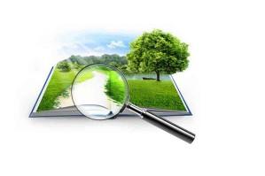 Каким образом можно изменить внешний вид разрешенного использования земельного участка